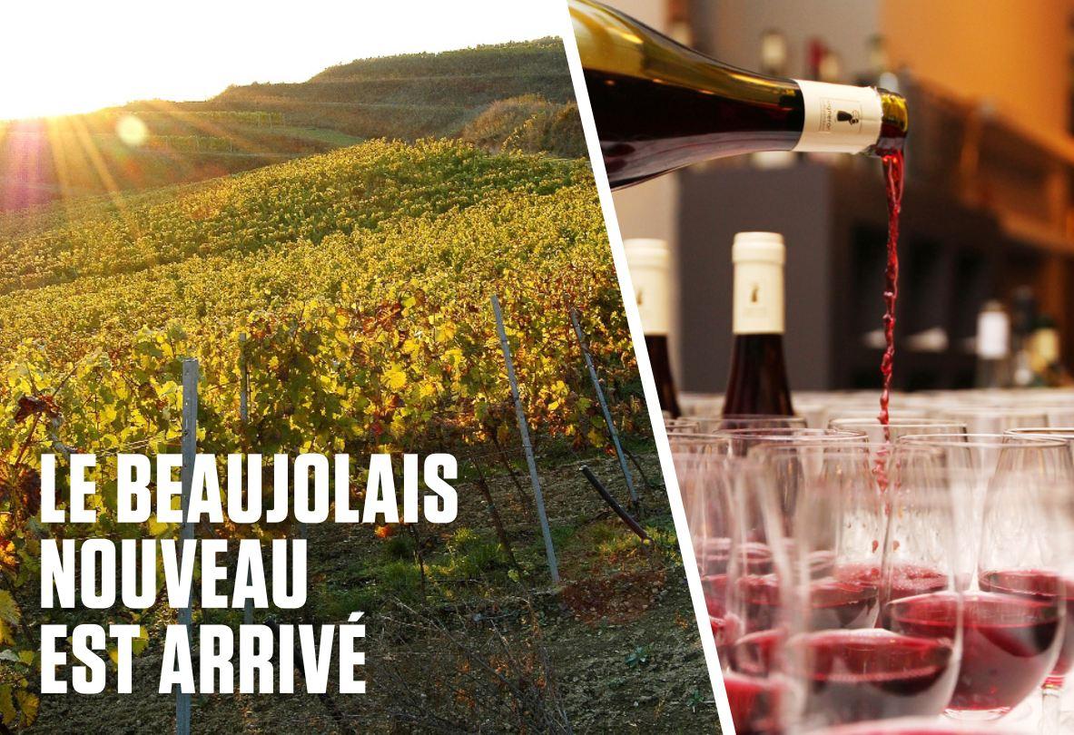 Le Beaujolais Nouveau est arrivé!